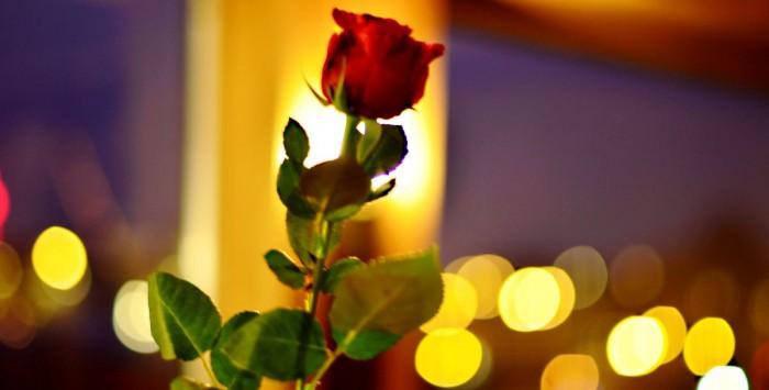 Crociera di San Valentino con cena e musica dal vivo - 14/2 2020