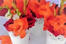 Květiny svaba na lodi
